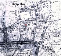 Lageplan (Auszug aus dem Urkataster von 1824 mit Nachträgen von 1875) / Gutshof in 72070 Tübingen-Hagelloch