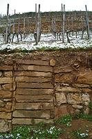 Baubefund im Castellberg, Historischer Terrassenweinberg bei Ballrechten-Dottingen / Castellberg, Historischer Weinberg in 79282 Ballrechten-Dottingen