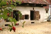 Schweinestall aus Ehningen (BB) / Freilichtmuseum Beuren in 72660 Beuren (02.09.2011 - Becker_priv)