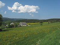 Blick nach Westen von Kappel zum Feldberg über den Zipfelhof / Zipfelhof in 79853 Lenzkirch, Kappel (14.05.2008 - freiburg-schwarzwald.de)