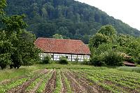 Südfront im FLM Beuren / Schafstall aus Schlaitdorf in 72667 Schlaitdorf (http://www.freilichtmuseum-beuren.de/museum/rundgang/schafstall-aus-schlaitdorf/)